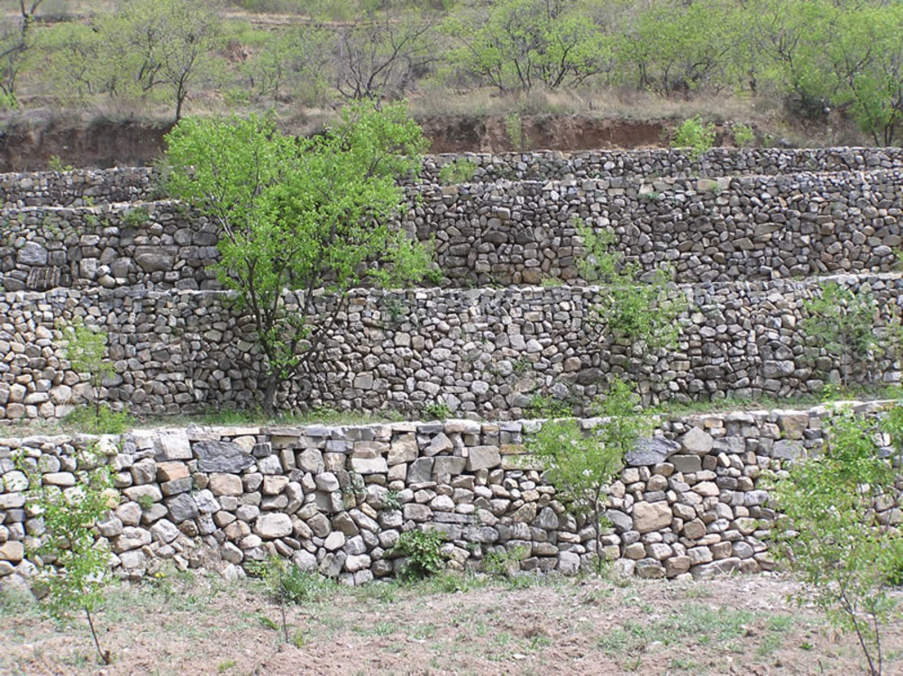 Archaeological Site,Geology,Wall