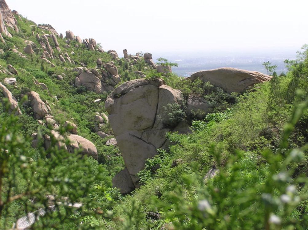 Plant Community,Mountain,Village