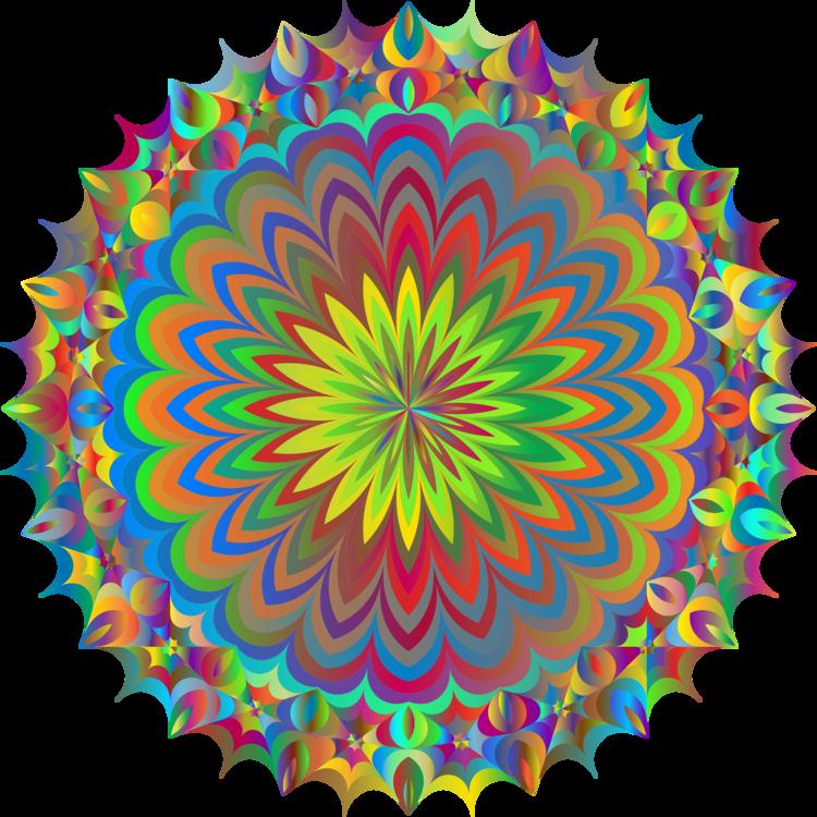 Flower,Symmetry,Floral Design
