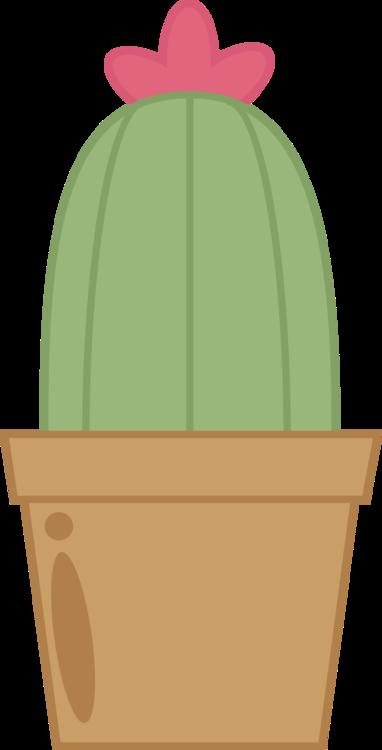 Plant,Flowerpot,Green
