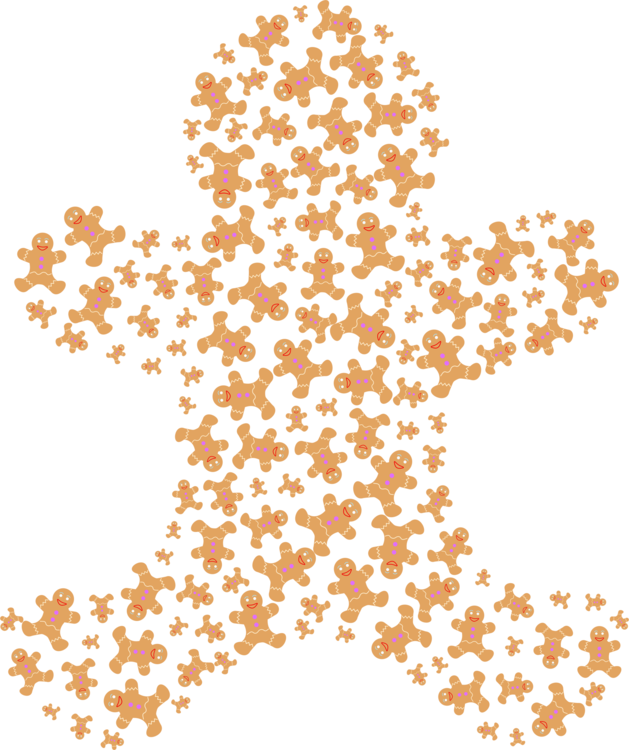 Petal,Leaf,Symmetry