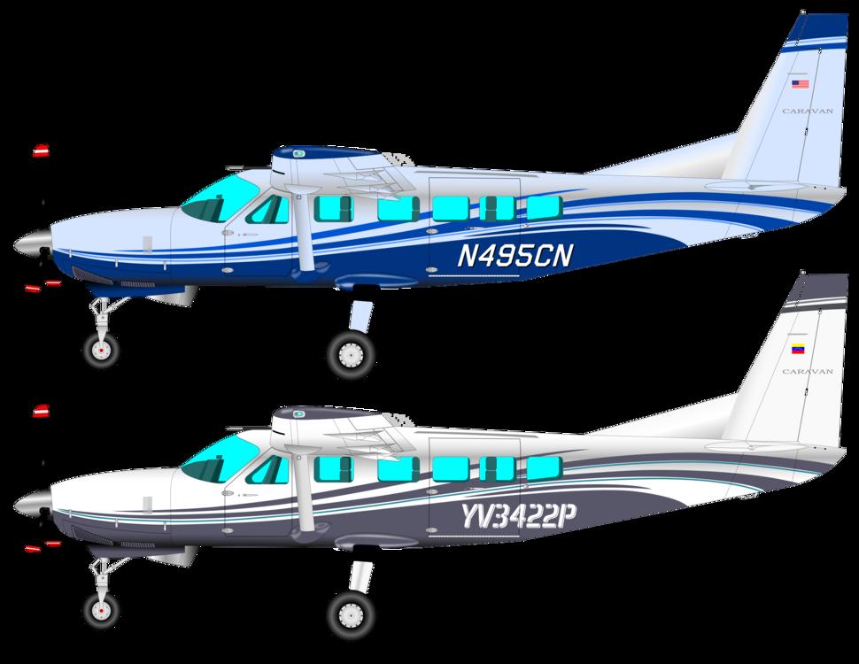 Propeller Driven Aircraft,Cessna 185,Flight