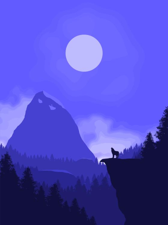 Landscape,Mountain,Night