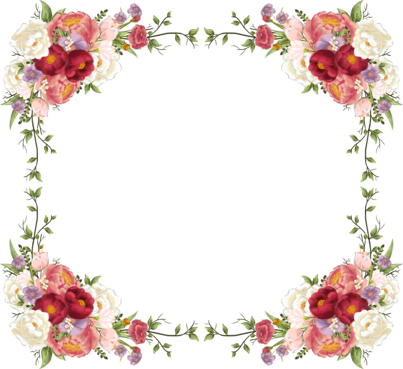 Picture Frame,Plant,Flower