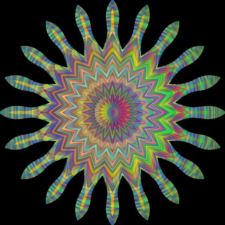 Plant,Flower,Circle