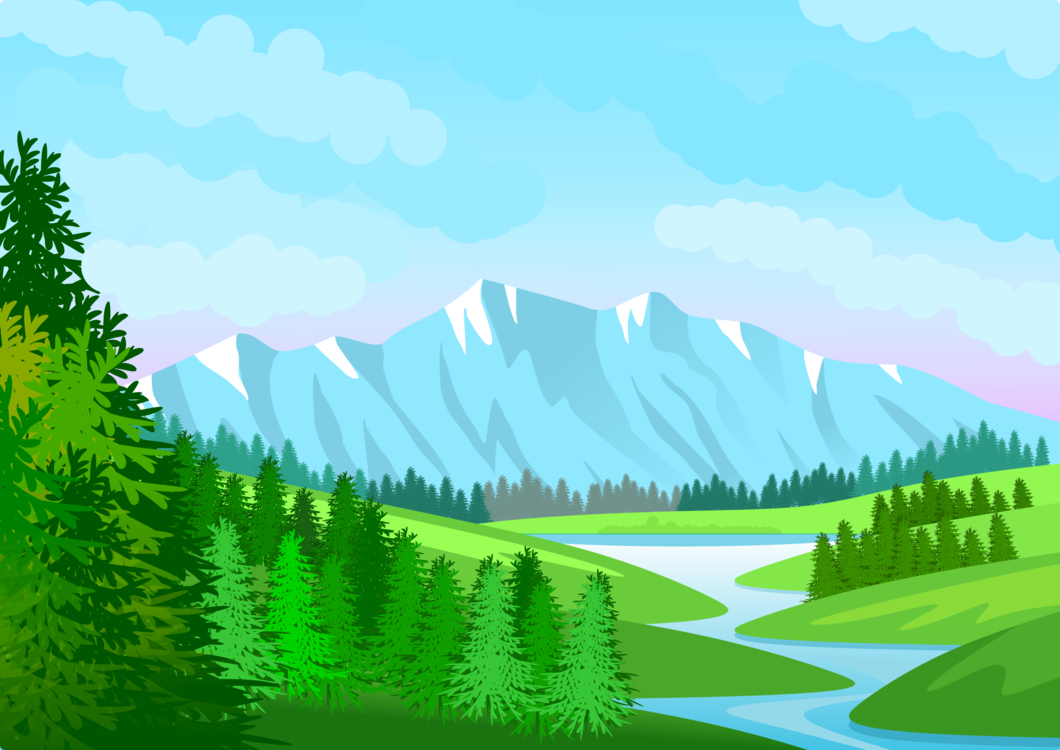 Fir,Pine Family,Mountain Range