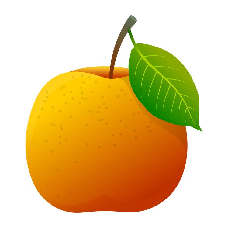 Seedless Fruit,Mandarin Orange,Plant