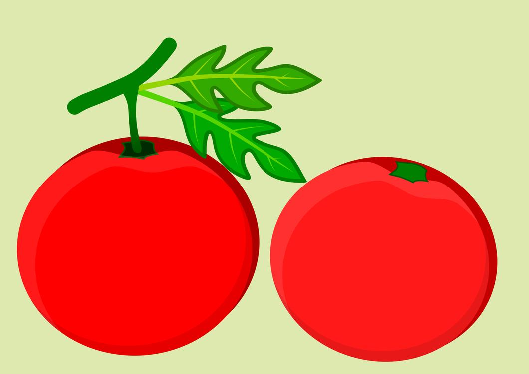Seedless Fruit,Tomato,Plant