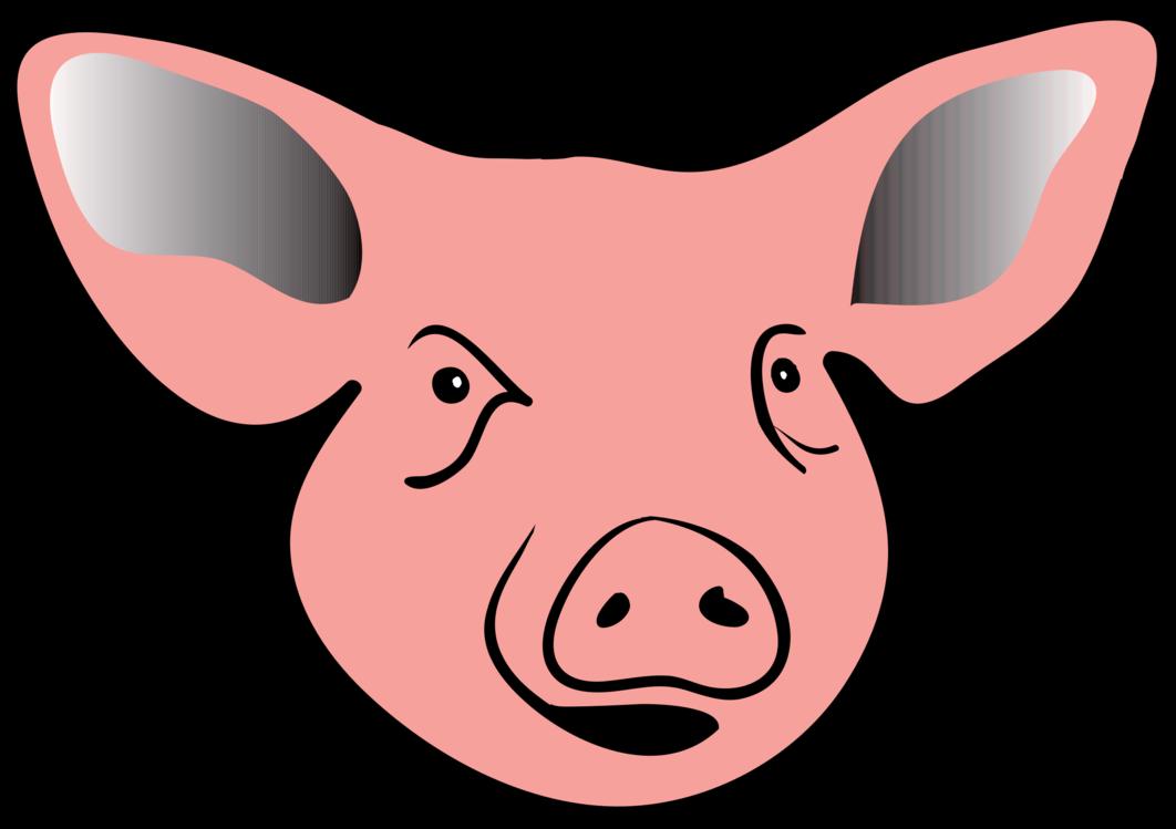 Pink,Head,Snout