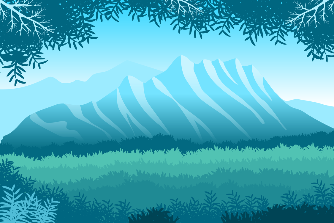 Fir,Mountain,Mountain Range