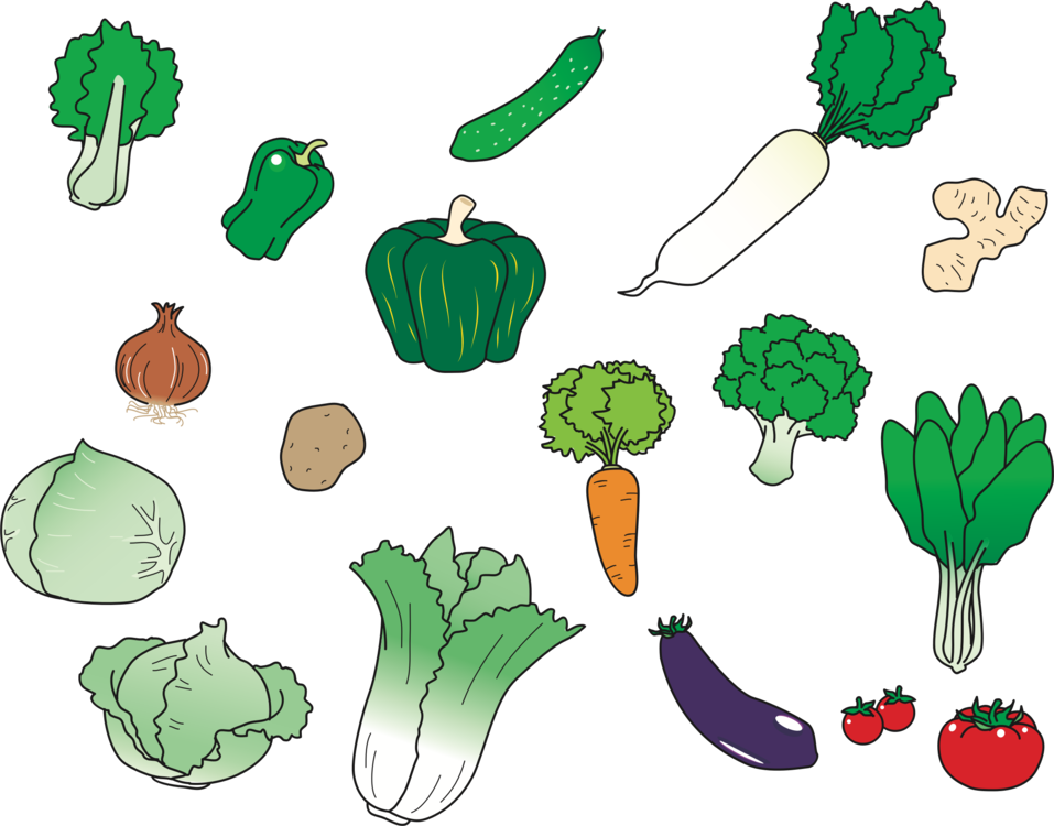 Botany,Plant,Vegetarian Food