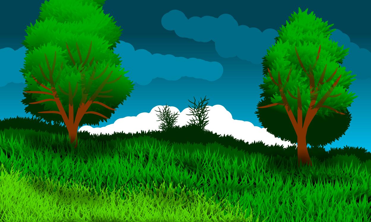 Plant,Leaf,Meadow