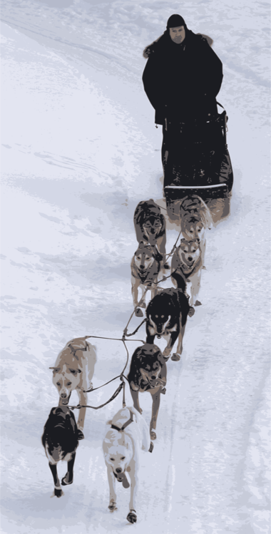 Image result for iditarod clipart | Sled pictures, Free dogs, Clip art