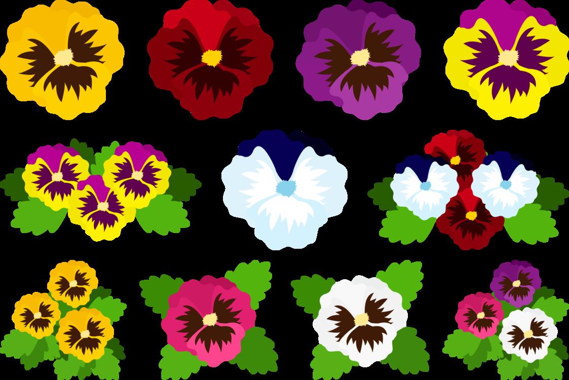 Plant,Flower,Petal