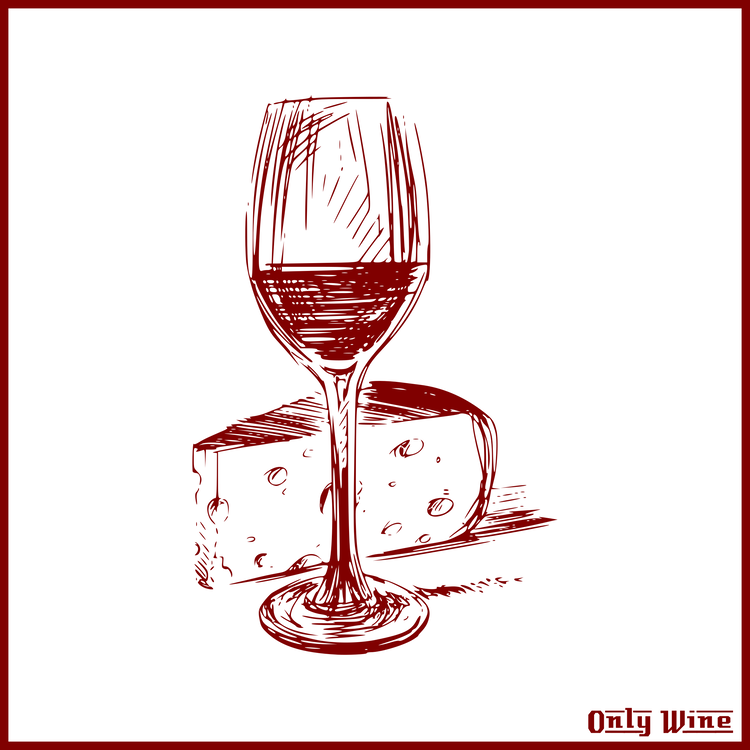 Dessert Wine,Champagne Stemware,Stemware