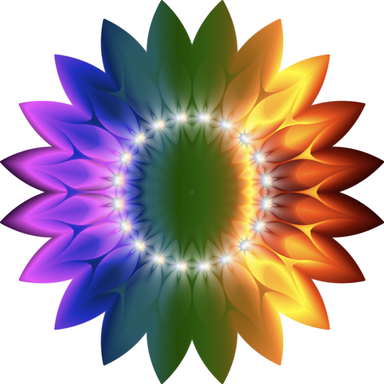 Plant,Flower,Sunflower PNG Clipart - Royalty Free SVG / PNG