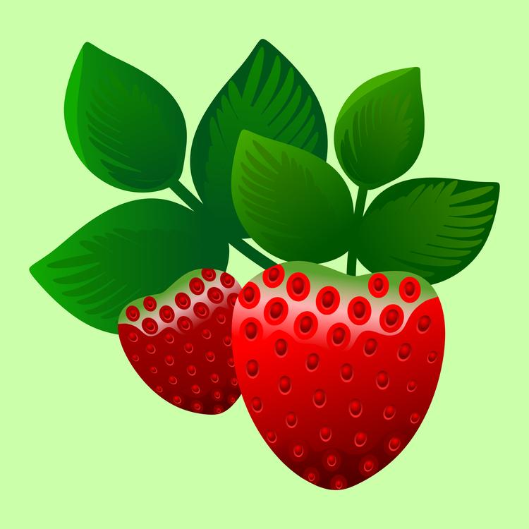Seedless Fruit,Plant,Leaf