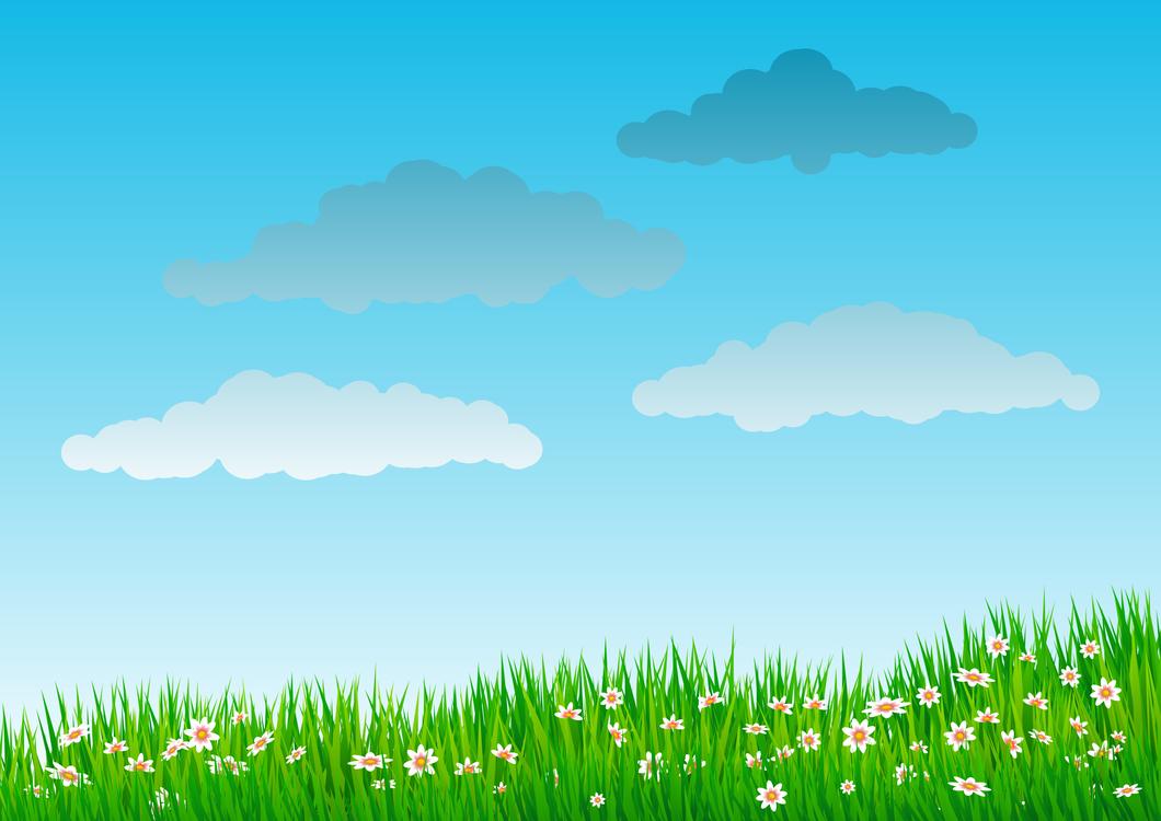 Landscape,Plant,Meadow