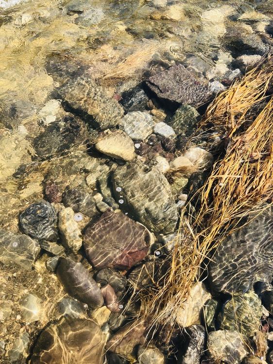 Igneous Rock,Geology,Soil