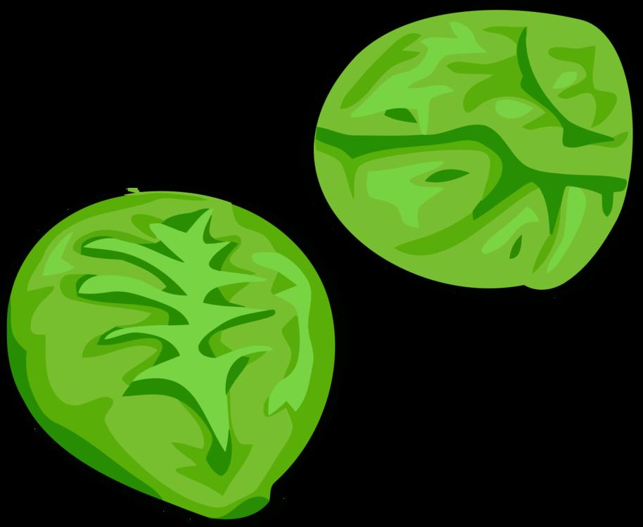 Plant,Leaf,Cruciferous Vegetables