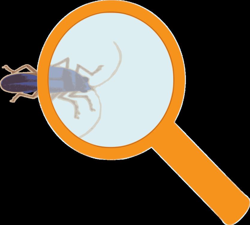 Logo,Line,Pest