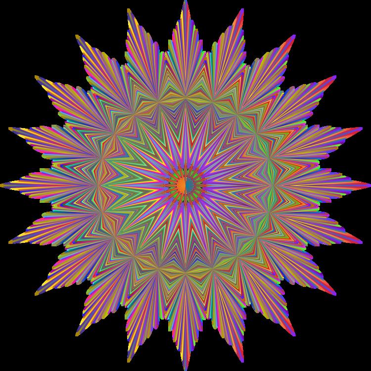 Plant,Symmetry,Fractal Art