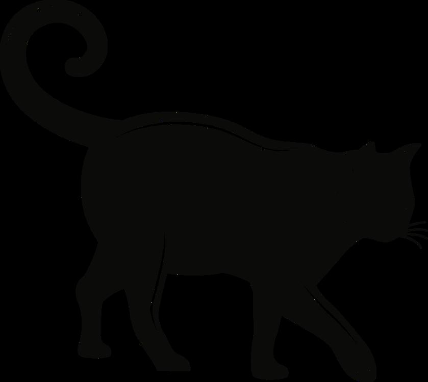 Carnivore,Silhouette,Felidae