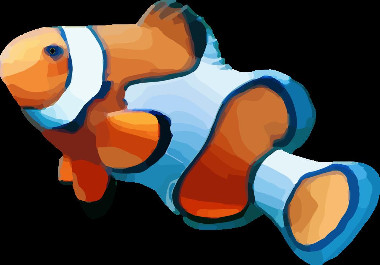 Anemone Fish,Fish,Animal Figure
