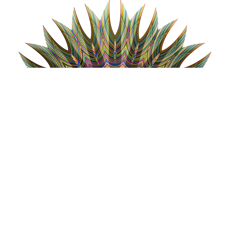 Botany,Plant,Flower