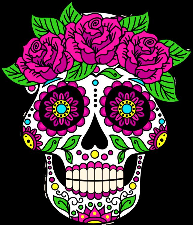Pink,Head,Flower