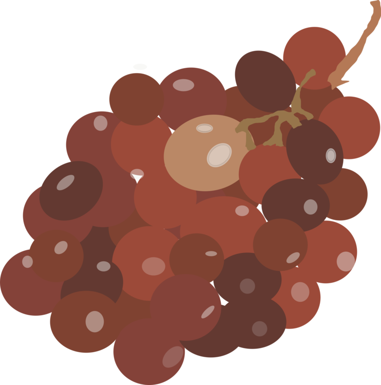 Brown,Plant,Grape