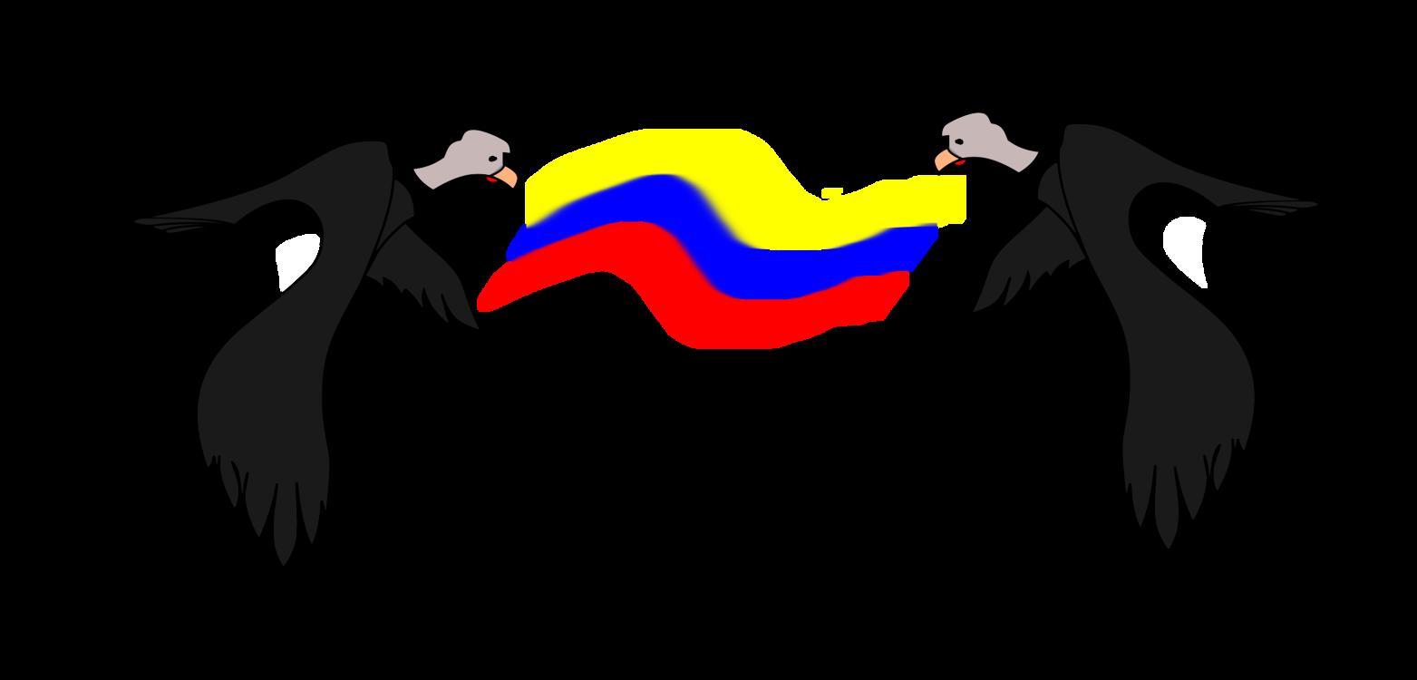 Beak,Vulture,Bird