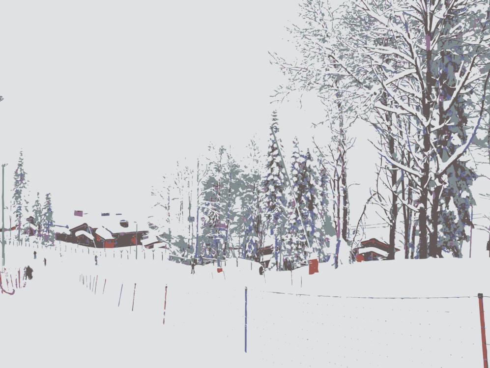 Slope,Plant,Winter