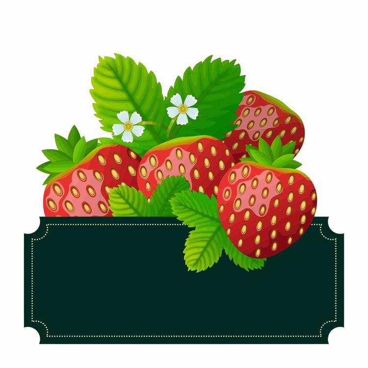 Alpine Strawberry,Plant,Leaf