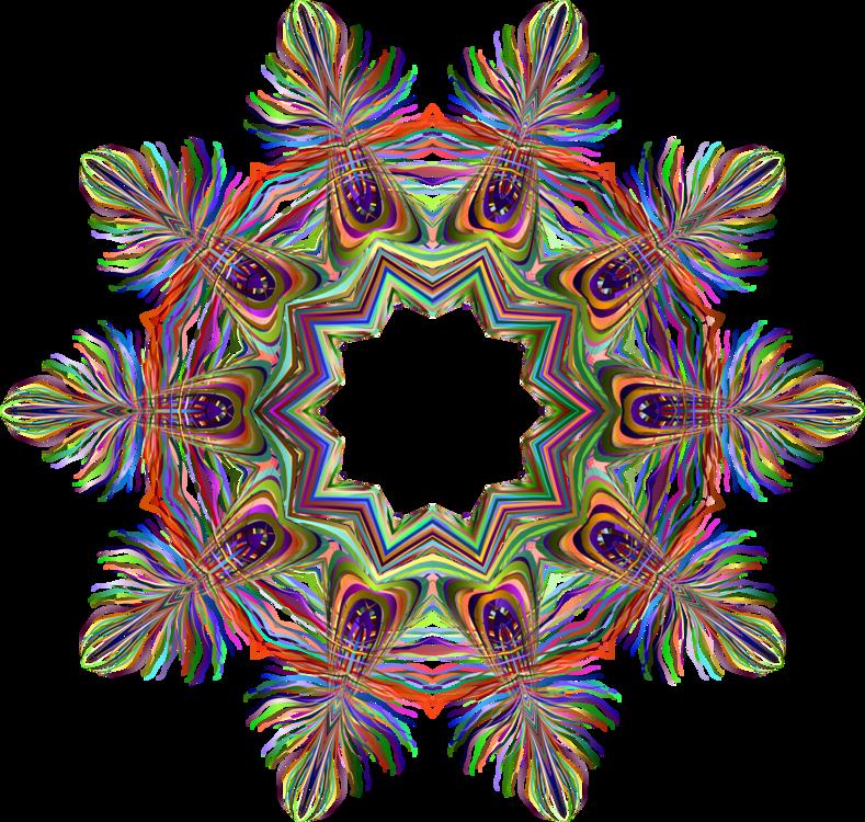 Plant,Symmetry,Circle