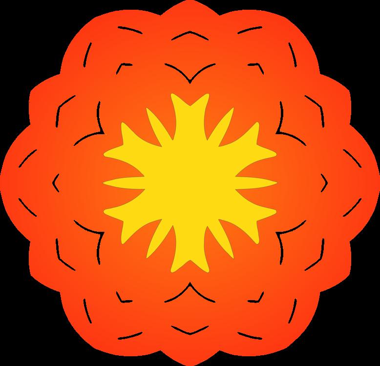 Plant,Symmetry,Orange