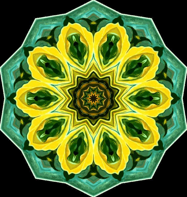 Flower,Plant,Yellow