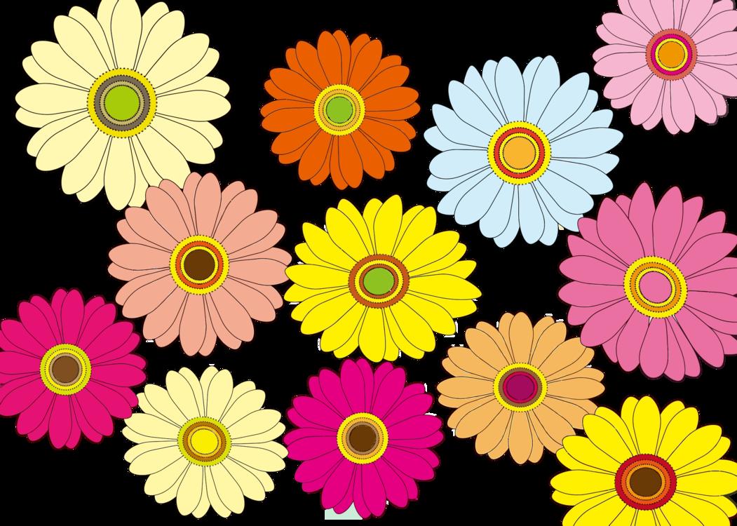 Plant,Flower,Chamomile