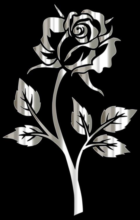 Style,Flower,Leaf