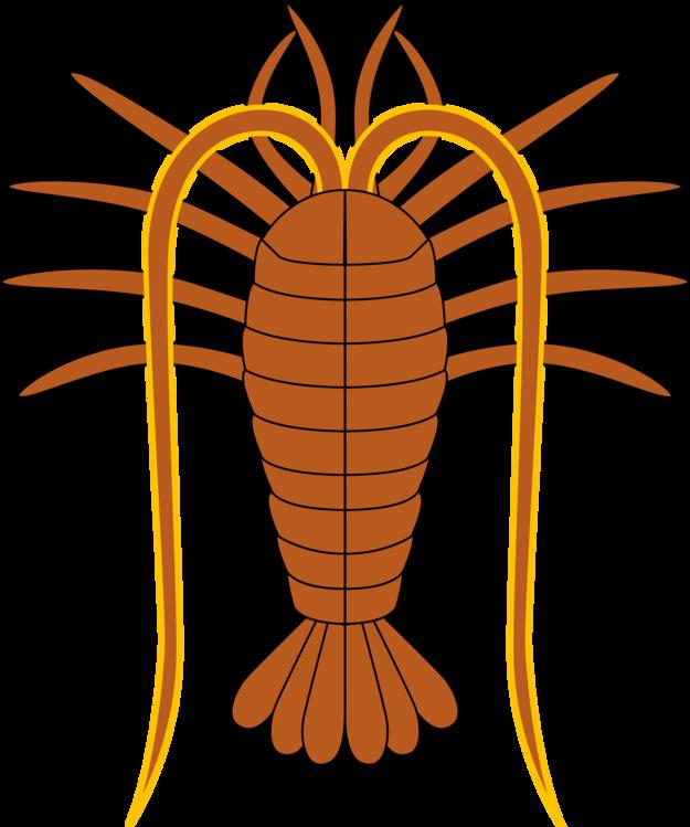 Invertebrate,Louse,Crayfish