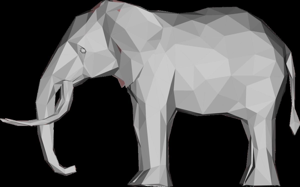 Wildlife,Tapir,Vertebrate