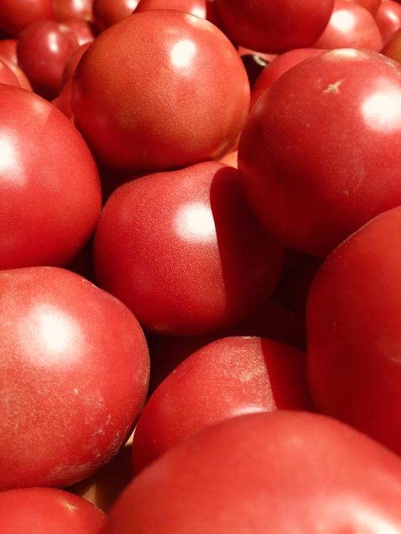 Tomato,Solanum,Vegetarian Food