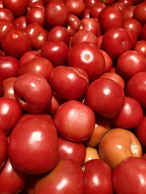 Tomato,Currant,Solanum