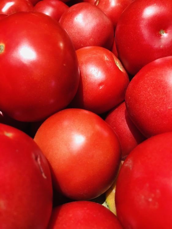 Tomato,Solanum,Ball