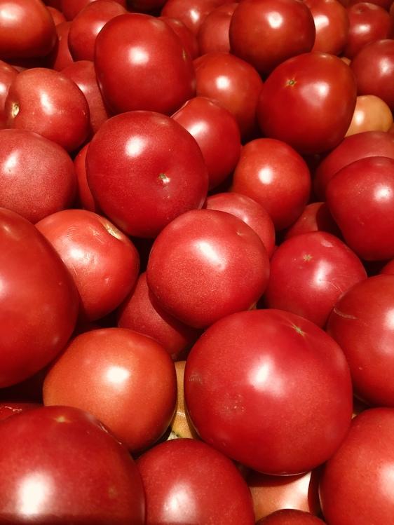 Tomato,Garcinia Indica,Solanum