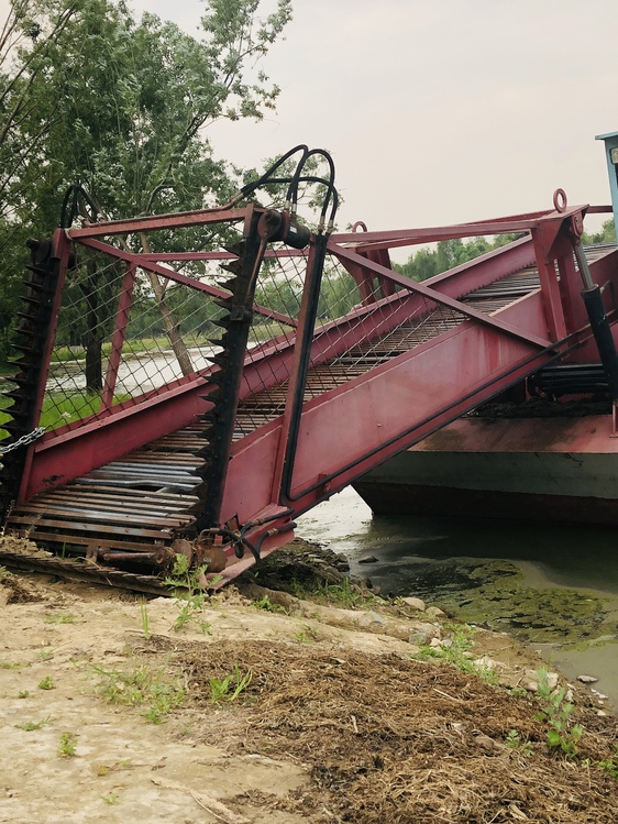Wheel,Bridge,Plant