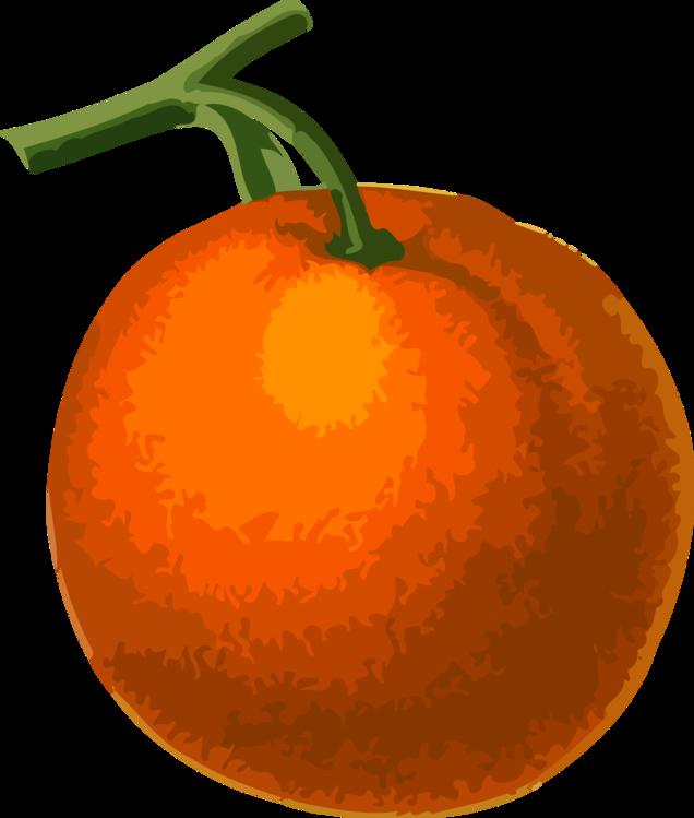 Tomato,Mandarin Orange,Plant