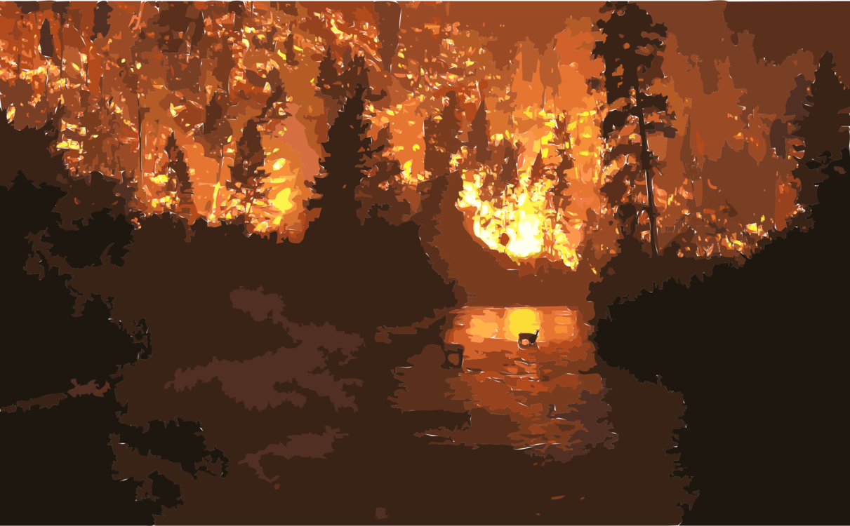 Wildfire,Evening,Reflection