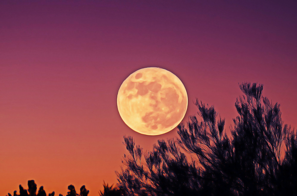 Astronomical Object,Space,Full Moon