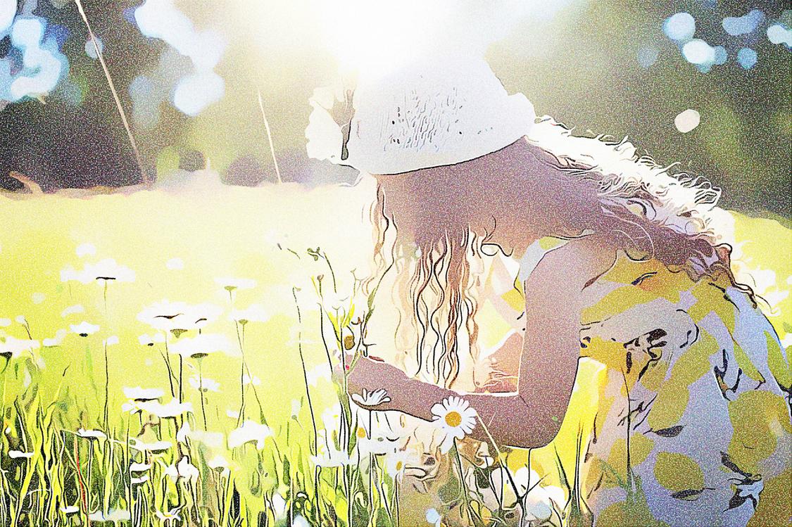 Flower,Summer,Grass Family